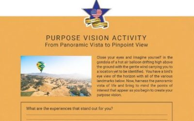 Purpose Vision Activity